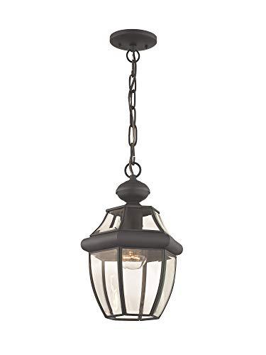 Livex Lighting 2152-07 Monterey 1-Light Outdoor Hanging Lantern, Bronze