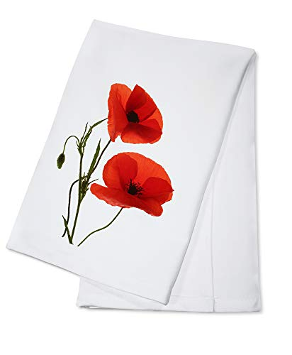 Single Poppy Flower Isolated on White Background Photography A-93741 (100% Cotton Kitchen Towel)