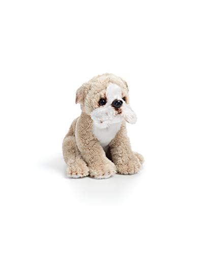 Toy Bulldog For Sale Only 3 Left At 65