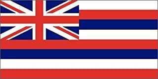 product image for Valley Forge Hawaii Flag 2ft x 3ft Nylon - Outdoor