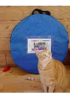 outdoor feline funhouse - 8