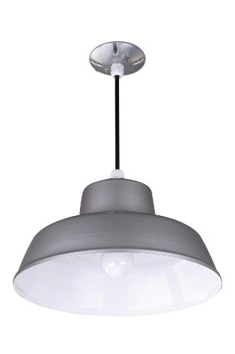 Canarm BL14CL All Weather 1-Bulb Suspended Mount All Weather Light, Grey by Canarm