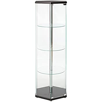 Hexagon Shaped Curio Cabinet Black and Clear