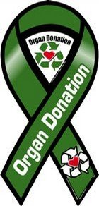 Organ Donation Awareness 2 in 1 Ribbon Magnet