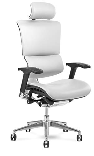 X Chair Office Desk Chair (X4 White Leather with Headrest) Ergonomic Lumbar Support Task Chair Breathable Mesh…