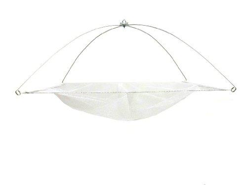 Ranger Umbrella Minnow Net with Nylon Netting (42-Inch x 42-Inch)