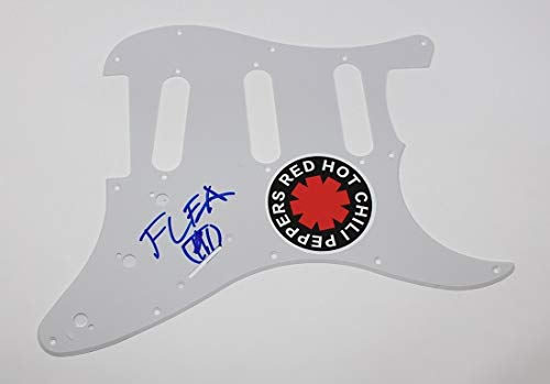 Red Hot Chili Peppers RHCP Blood Sugar Sex Magik Flea Signed Autographed Fender Strat Guitar Pickguard Loa