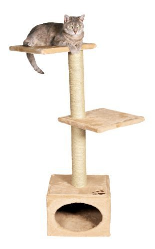 Trixie Pet Products Badalona Cat Tree, Beige by TRIXIE Pet ...