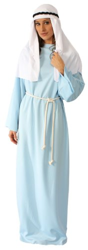 (Alexanders Costumes Story of Christ Gown Adult, Light Blue, One)