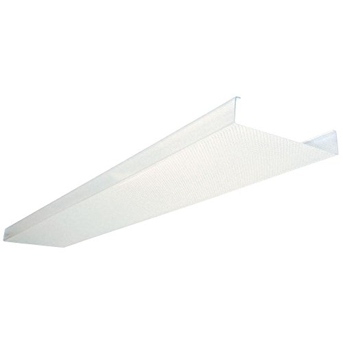 Lithonia Lighting 48 In. Square Basket Two Bulb Replacement Wraparound Lens DSB48