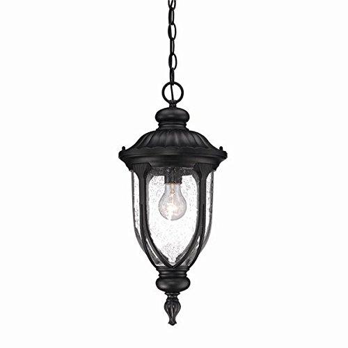 Acclaim 2216BK Laurens Collection 1-Light Outdoor Light Fixture Hanging Lantern, Matte Black