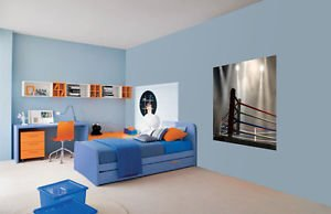 Cool Boxing Wrestling UFC Ring Kids Boys Wallpaper Wall Mural Large