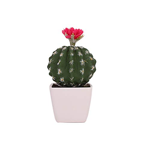Artificial Succulents Flowering Cactus Balls Pink Potted