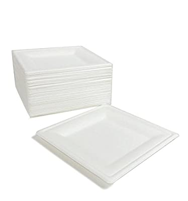 Repurpose 100% Compostable, Tree Free, Plant-Based Plates, Square, 8 inch (125 Count)