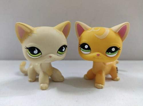 Littlest pet shop Cat #2747 Kitty NEUF