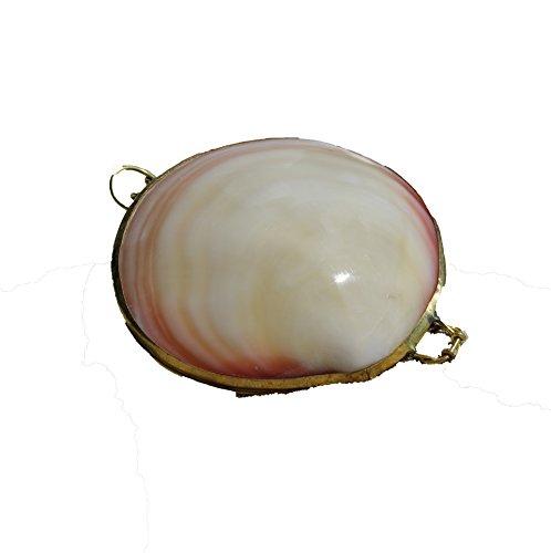 Sea Shells Coin Purse Pill Box