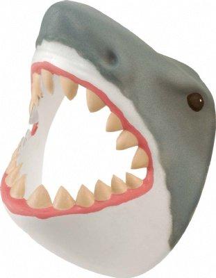 Man Pets Shark Like A Dog
