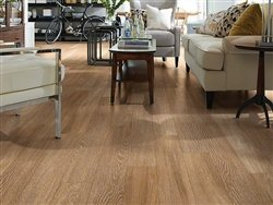 "Shaw Floors Premio Plank 5.83"" Luxury Vinyl Tile Flooring Duomo Sample"