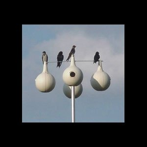 Heath Outdoor Products 30104 13.5-Foot Aluminum Purple Martin Gourd Pole, 4-Piece 4-Over-4 Design