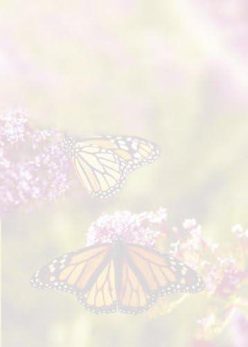 Apli tsc6689 20 hojas de papel ilustrado, 210 x 297 mm, el jardín de las mariposas: Amazon.es: Oficina y papelería
