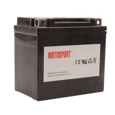 Motosport Maintenance-Free Battery with Acid GTX20LBS for Kawasaki MULE 3010 TRANS 4X4 2005-2007 ()