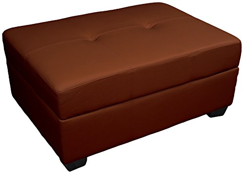 Leather Look Upholstered Tufted Padded Hinged Storage Ottoman Bench, 36 by 24 by 28