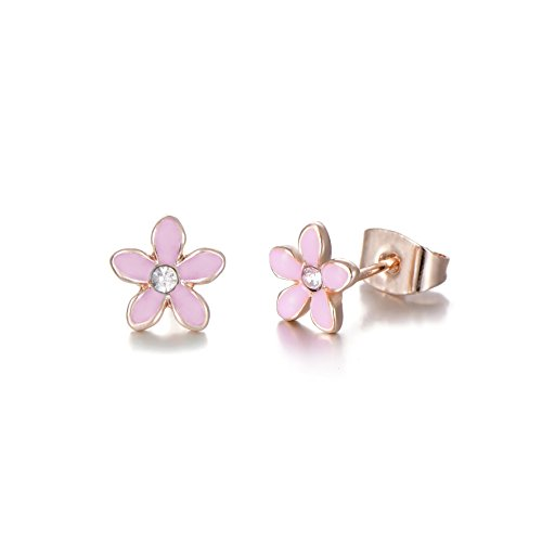 Rose Gold Plated Stainless Steel Mixed Color Cute Pineapple Mouse Love Parrot Ladybug Stud Earrings Set by HYZ (Image #1)