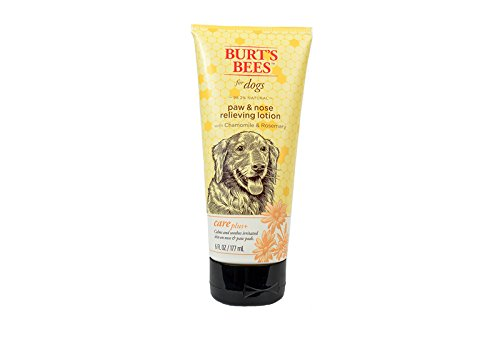 Burt's Bees For Dogs Care Plus Natural Relieving Paw and Nose Lotion With Chamomile and Rosemary, 6 Ounces