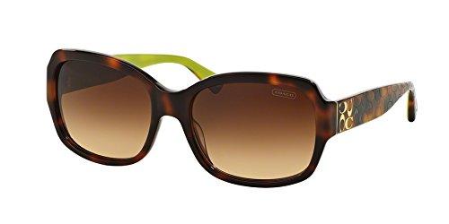 - Coach Sunglasses HC 8001 HAVANA 5052/13 HC8001