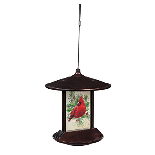 Evergreen Cardinal Solar Birdfeeder (Best Feeder For Cardinals)