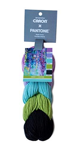 Caron x Pantone Acrylic & Merino Wool Blend Yarn •• 5 Coordinated Colors in 1 Braid (Bright Orchid 291101-01031)