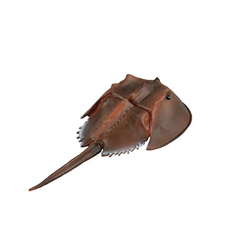 Warmtree Simulated Sea Life Animals Figurines Realistic Plastic Model Ocean Animals Action Figure for Kids' Collection Science Educational Toy (Horseshoe Crab)