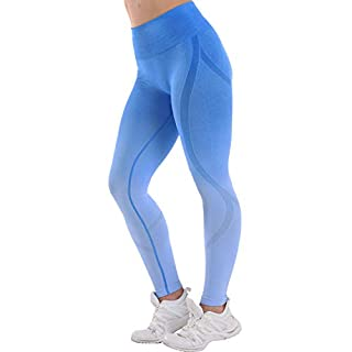 High Waisted Seamless Leggings for Women Tummy Control Workout Gym Butt Lifting Tights Mesh Yoga Pants (Gradient Blue, Large)