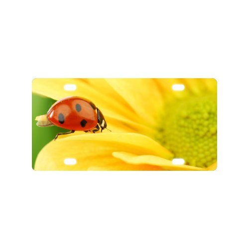 Ladybug on Yellow Flower License Plate with High-resolution Images -12