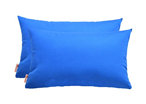 RSH Decor Set of 2 Indoor/Outdoor Decorative Lumbar/Rectangle Pillows - Sunbrella Canvas Capri by RSH Decor