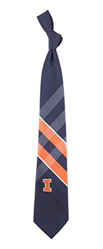 - Eagles Wings University of Illinois Grid Tie