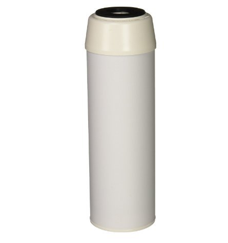 Pentek CC-10 Coconut Carbon Drinking Water Filters