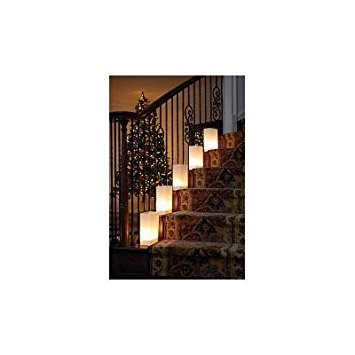 White Luminarias Electric Kit - pack of 10 by LB Inc. (Image #3)