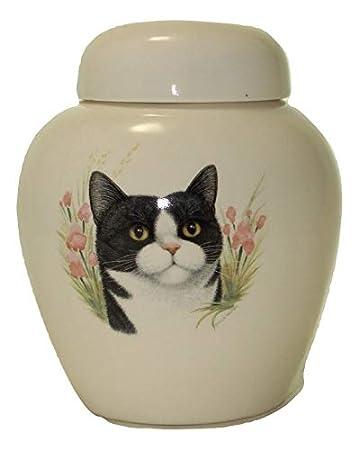 Amazon.com: Skyline Arts Urna de gato blanco y negro – Urna ...