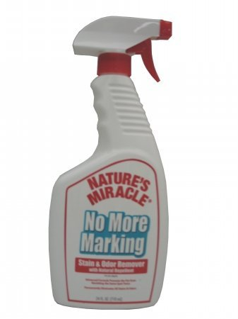 Nature S Miracle Stain Odor Remover Searchub