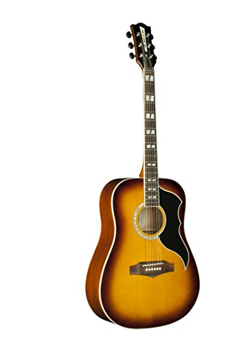 EKO Guitars 06216940 RANGER Series VR VI Dreadnought Acoustic Guitar, Honey Burst (Acoustic Electric Honey Guitar)