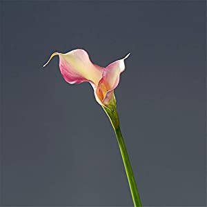 Artificial Decorative Flowers High Simulation Hand Calla Lily Begonia Artificial Flower Fake Flower Decoration Flower Plastic Flower Dried Flower Arrangement Living Room 54cm Artificial Flowers. 69