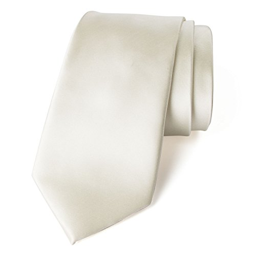 (Spring Notion Men's Solid Color Satin Microfiber Tie, Regular Ivory)