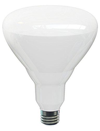 Uv Heat Bulb 100w Flood - 9