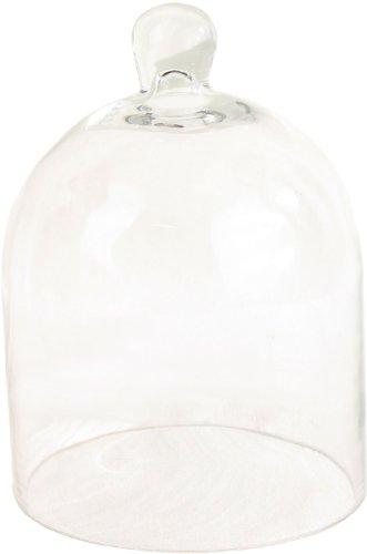 small cake glass dome - 2