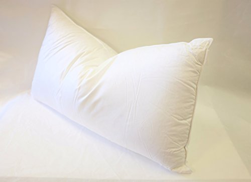 East Coast Bedding European 800 Fill Power White Goose Down Pillow. (King)