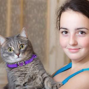 Mtliepte 2 Pcs Cat Collars Heart Bling Breakaway with Bell Nylon Adjustable for Kitty