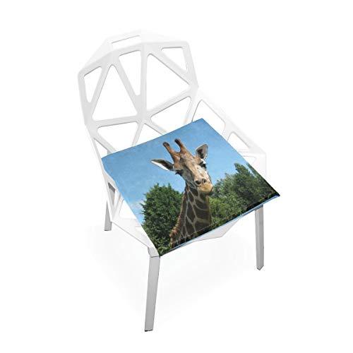 Seat Cushion Giraffe Cute Chair Cushion Offices Butt Chair Pads Square Car Mat for Computer