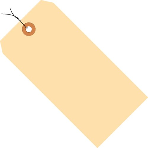 (Aviditi G30063 10 Point Cardstock Pre-Wired Shipping Tag, 5-1/4