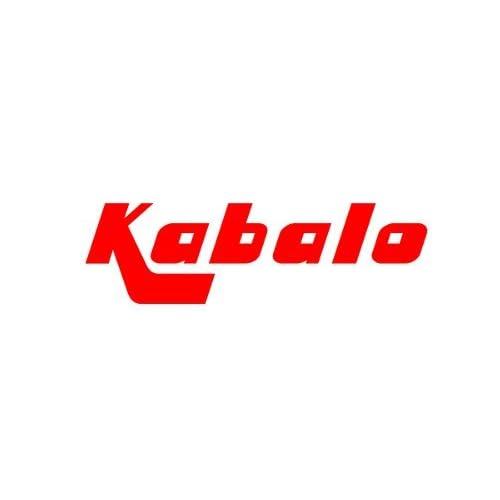 hot sale 2017 Kabalo 12V Aspirateur de voiture avec gonfleur - Wet / Dry Canister In-Car Vacuum Cleaner Caravan Vans Boats with inflator